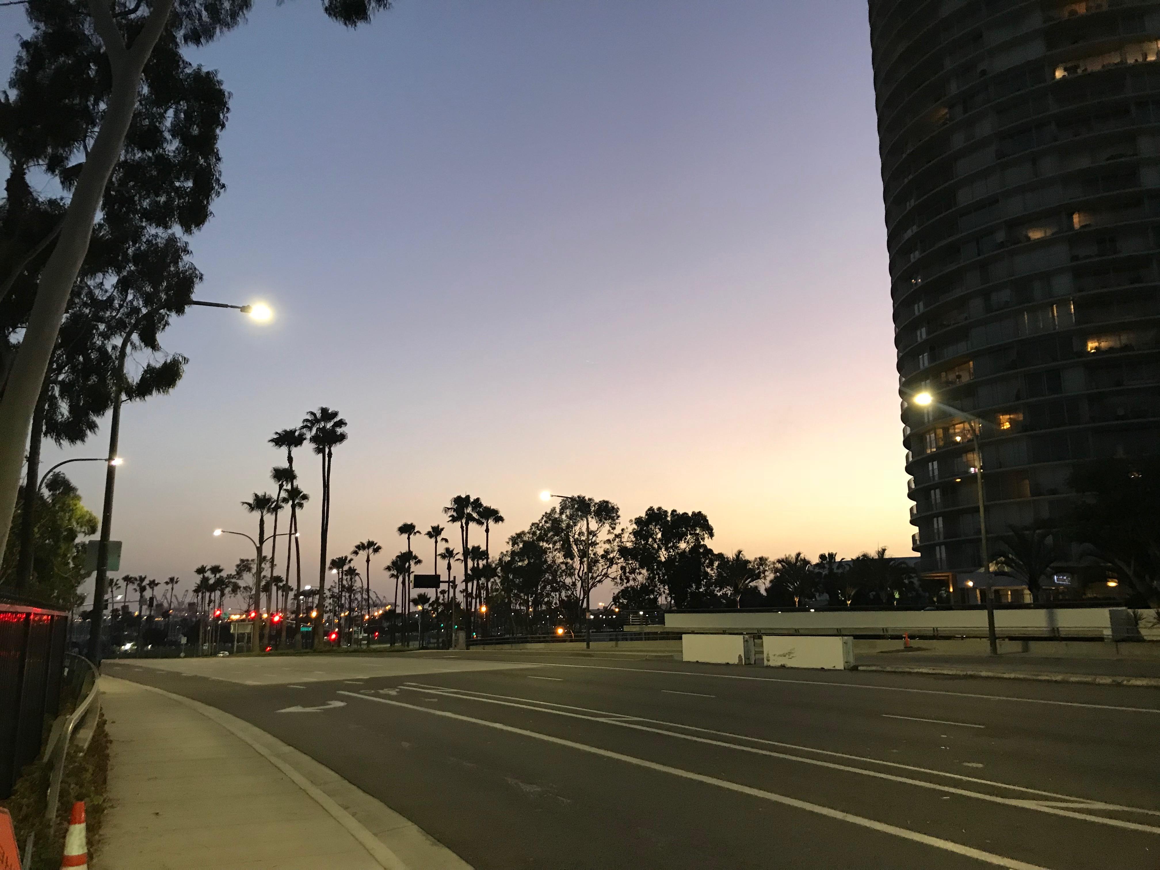 カリフォルニア・ドリーミング