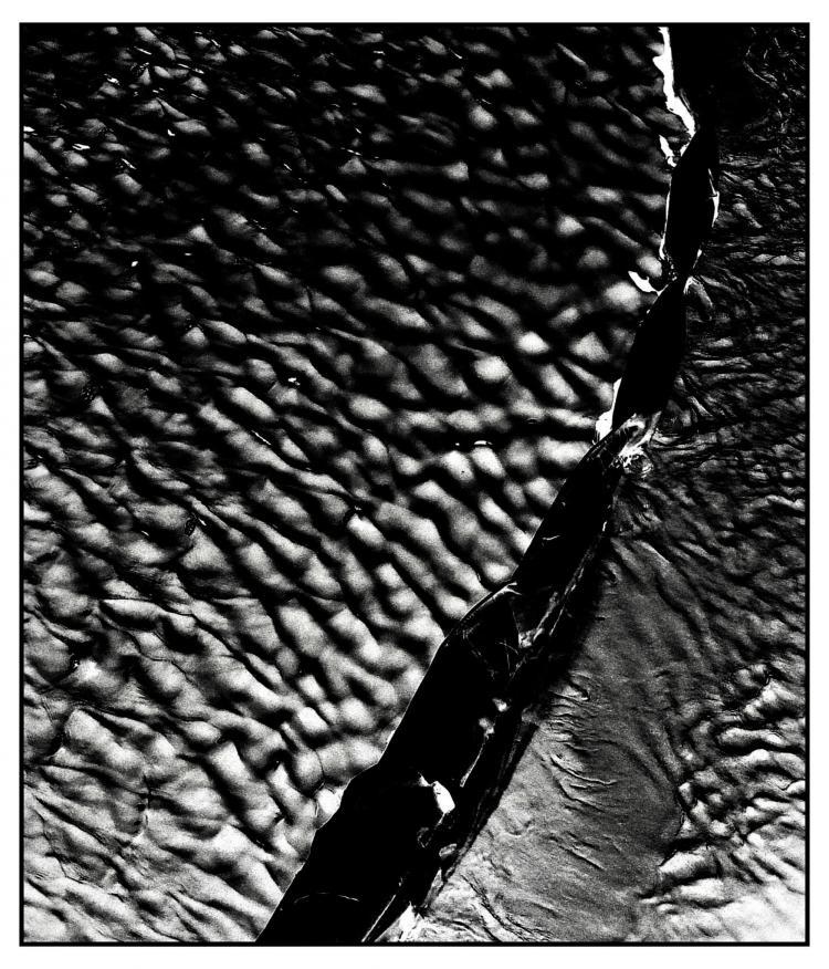 とらえることのできない刹那さを写し出す。池谷 陸の写真展が開催されます。