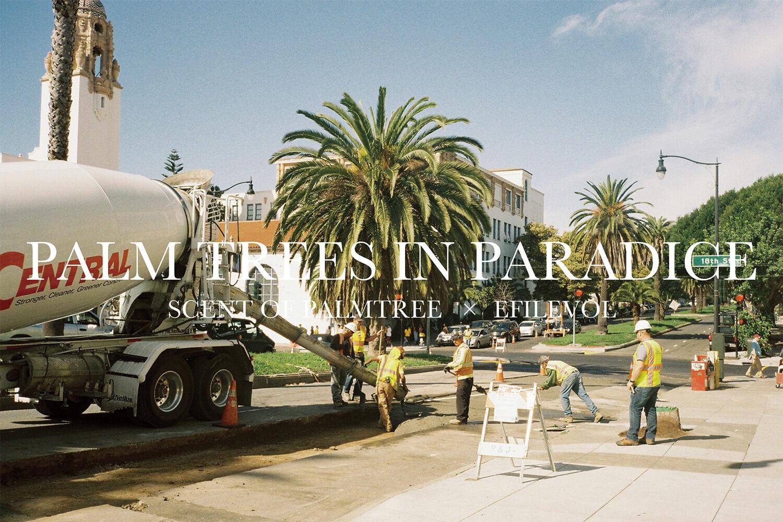 """""""椰子の木がある風景""""だけを収録。写真集『SCENT OF PALMTREE』の販売&展示イベントが開催されます!"""
